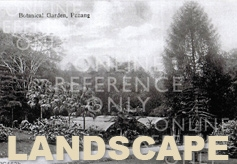 Picture for category Landscape