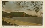 Picture of Beautiful Sea Coast Tanjong Bungah