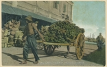 Picture of Hand-Cart Loaded With Bananas, Singapore
